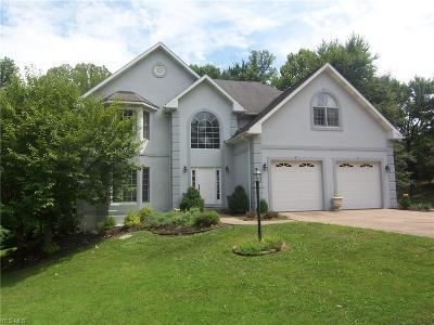 Vienna Single Family Home Active Under Contract: 1313 Greenmont Valley Drive