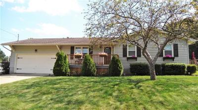 Youngstown Single Family Home Active Under Contract: 2264 Woodridge Court