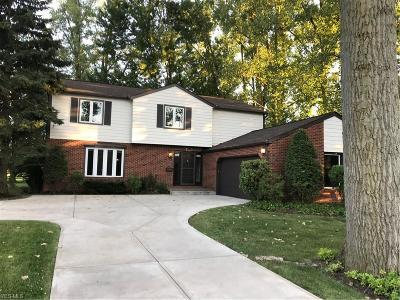 Single Family Home For Sale: 31109 Wolf Road