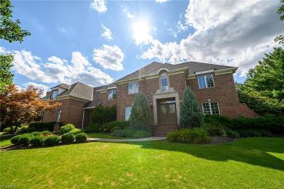 Aurora Single Family Home For Sale: 280 Camden Lane