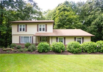 Chagrin Falls Single Family Home For Sale: 18790 High Point Road