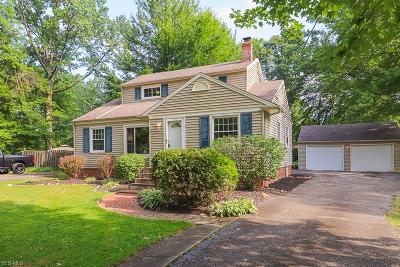 Single Family Home For Sale: 27550 Dunford Road