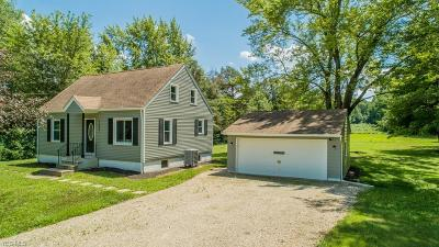 Kent Single Family Home For Sale: 3687 Ranfield Road
