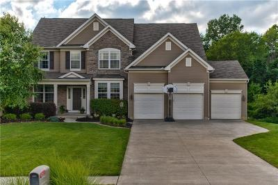 Twinsburg Single Family Home Active Under Contract: 7842 Ridgetop Drive