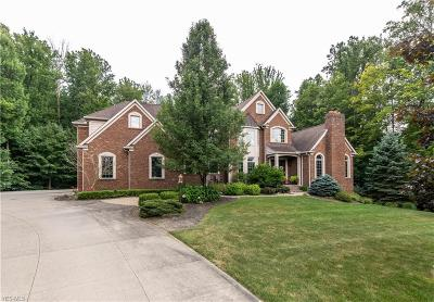 Chagrin Falls Single Family Home For Sale: 16505 Majestic Oaks Drive