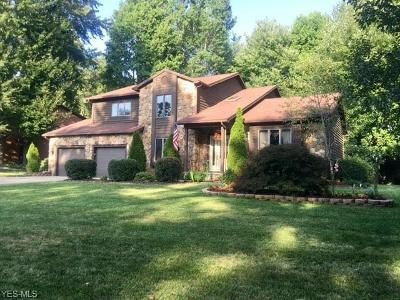 Vienna Single Family Home For Sale: 5300 13th Avenue