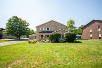 Canfield Condo/Townhouse For Sale: 3761 Indian Run Drive #2