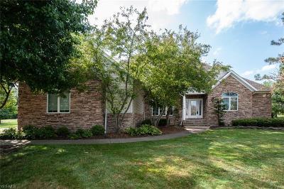 Medina Single Family Home For Sale: 6354 Burrow Court