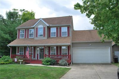 Painesville Single Family Home For Sale: 10986 Spear Road