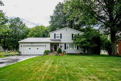 Canfield Single Family Home Active Under Contract: 6080 Chidester Drive