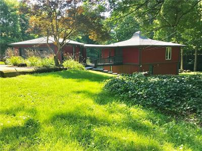 Canfield Single Family Home For Sale: 4115 Canfield Road