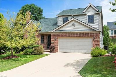 Macedonia Single Family Home Active Under Contract: 329 Hartsfield Terrace