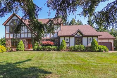 Broadview Heights Single Family Home For Sale: 2075 Oakes Road
