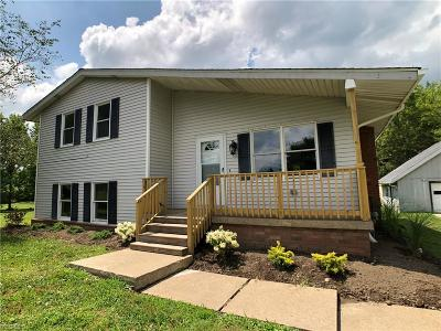 Painesville OH Single Family Home For Sale: $224,900