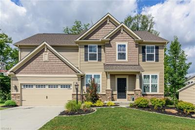 Twinsburg Single Family Home For Sale: 9423 Grace Drive