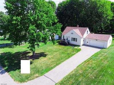 Canfield Single Family Home For Sale: 227 Fairview Avenue