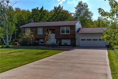 Painesville OH Single Family Home For Sale: $274,900