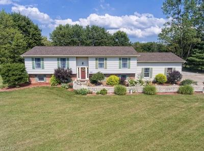 Seville Single Family Home For Sale: 7345 Meadow View Drive