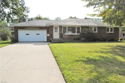 Avon Lake Single Family Home For Sale: 177 Duff Drive