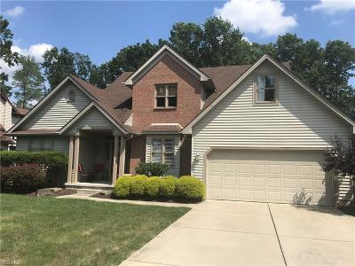 Youngstown Single Family Home For Sale: 1629 Eastwind Place