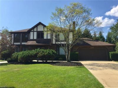 Solon Single Family Home For Sale: 34900 Ada Drive