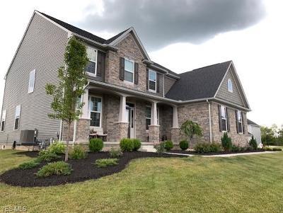 North Royalton Single Family Home For Sale: 5513 River Smt