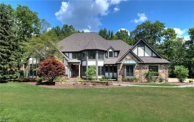 Hudson Single Family Home Active Under Contract: 6353 Paderborne Drive