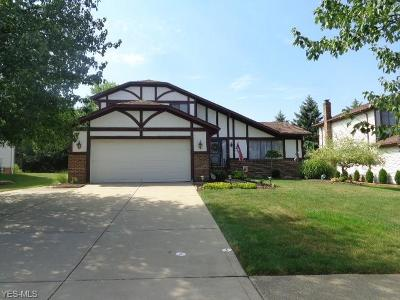 Parma Single Family Home For Sale: 9303 Running Brook Drive