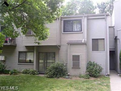 Willoughby Condo/Townhouse Active Under Contract: 38325 N Lane H-104