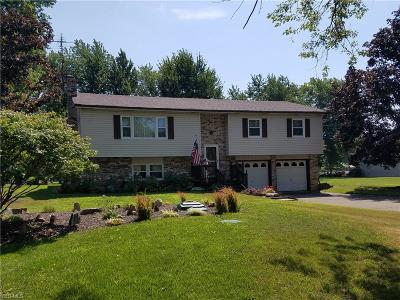 Warren Single Family Home For Sale: 7152 Mahoning