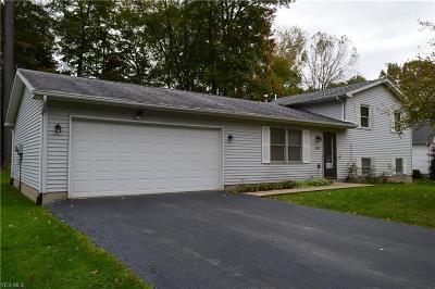Warren Single Family Home For Sale: 1386 Raccoon Drive