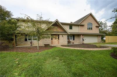 Columbiana County Single Family Home For Sale: 2736 Westville Lake Road