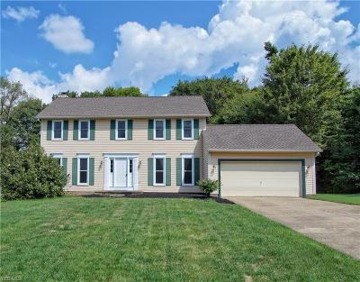 Twinsburg Single Family Home For Sale: 2113 Parkview Drive