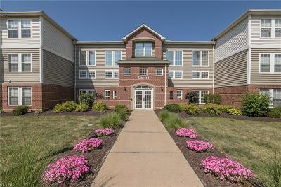 Olmsted Falls Condo/Townhouse Active Under Contract: 23003 Chandlers Lane #222