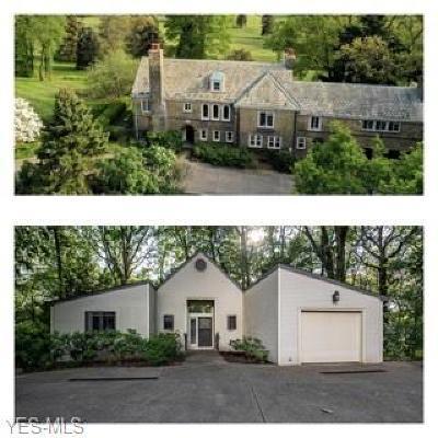 Columbiana County Single Family Home For Sale: 49666 Villa View Drive