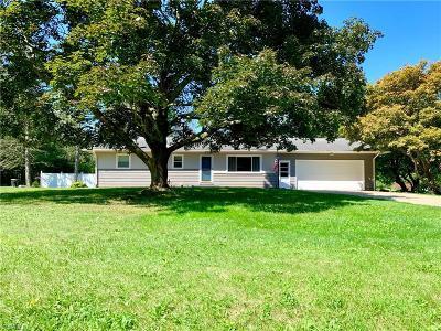 Single Family Home For Sale: 11255 Eleanor Avenue