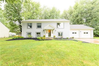 Painesville Single Family Home For Sale: 1048 Valewood Court