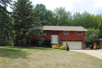 Strongsville Single Family Home Active Under Contract: 16624 W 130th Street