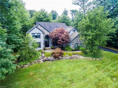 Chagrin Falls Single Family Home For Sale: 17551 Lakesedge Trail