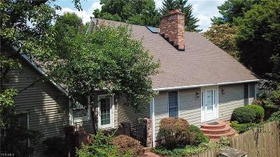 Vienna Single Family Home For Sale: 4507 4th Avenue
