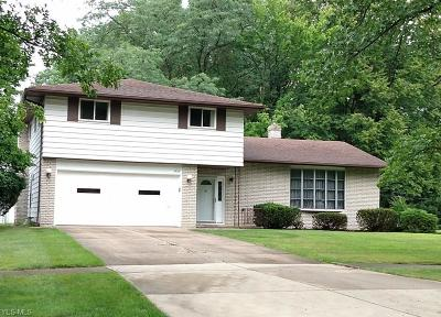 Middleburg Heights Single Family Home For Sale: 7406 Baldwin Creek Drive