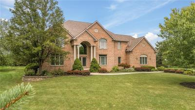 Solon OH Single Family Home For Sale: $685,000