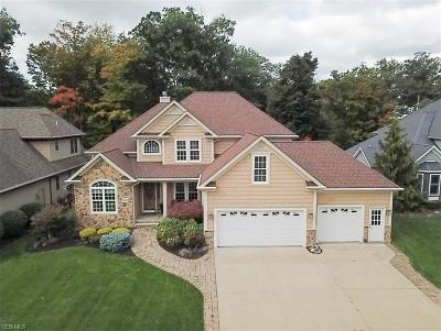 Painesville Single Family Home For Sale: 1185 Waterfront Place