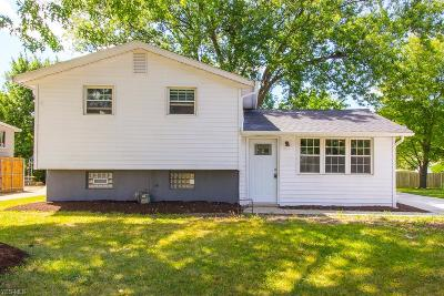 Single Family Home For Sale: 6100 Slater Drive