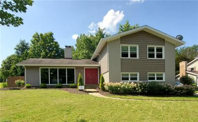 Aurora Single Family Home For Sale: 119 N Park Drive