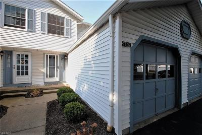 Twinsburg Condo/Townhouse For Sale: 9592 E Idlewood
