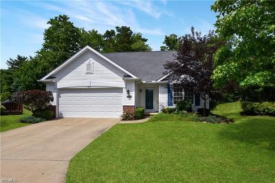 Broadview Heights Single Family Home Active Under Contract: 1419 Pippen Circle