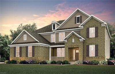 Aurora Single Family Home For Sale: 865 Birdsong