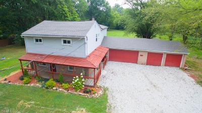 Single Family Home For Sale: 12616 Union Avenue