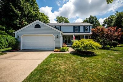 Painesville Single Family Home Active Under Contract: 641 Lanark Lane